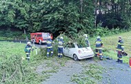Einsatz 29.06.2020: T10 - Verkehrsunfall mit eingeklemmter Person